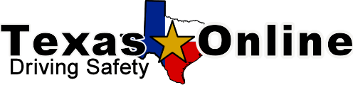 Texas Driving Safety logo